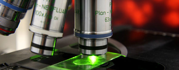 Microscope for research
